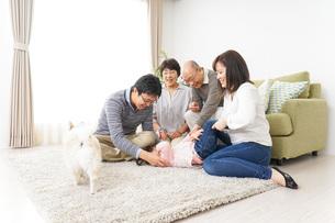 家族で犬と遊ぶ幸せな三世代ファミリーの写真素材 [FYI04704506]