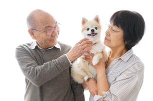 ペットを飼う高齢者夫婦の写真素材 [FYI04704560]