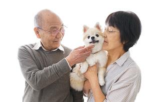 ペットを飼う高齢者夫婦の写真素材 [FYI04704562]