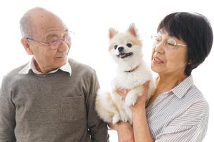 ペットを飼う高齢者夫婦の写真素材 [FYI04704564]