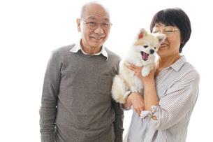 ペットを飼う高齢者夫婦の写真素材 [FYI04704571]