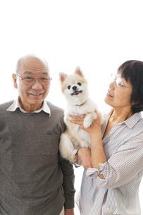 ペットを飼う高齢者夫婦の写真素材 [FYI04704574]