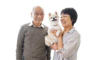 ペットを飼う高齢者夫婦の写真素材 [FYI04704575]