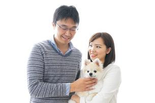 犬を抱く夫婦・カップル・ブリーダー・動物愛護の写真素材 [FYI04704582]