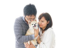 犬を抱く夫婦・カップル・ブリーダー・動物愛護の写真素材 [FYI04704588]