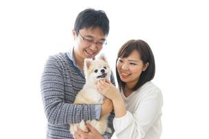 犬を抱く夫婦・カップル・ブリーダー・動物愛護の写真素材 [FYI04704591]