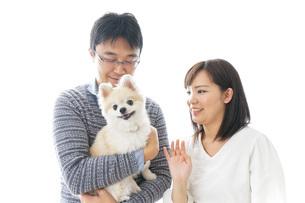 犬を抱く夫婦・カップル・ブリーダー・動物愛護の写真素材 [FYI04704592]