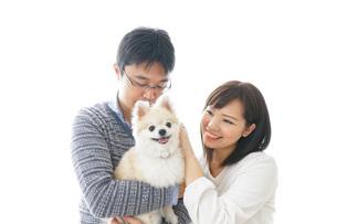 犬を抱く夫婦・カップル・ブリーダー・動物愛護の写真素材 [FYI04704597]