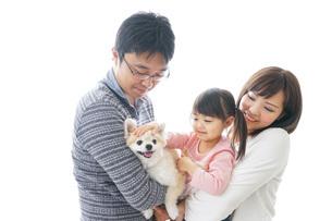 犬を飼う幸せなファミリーの写真素材 [FYI04704612]