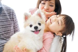 犬を飼う幸せなファミリーの写真素材 [FYI04704617]
