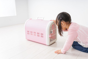 ペットの世話をする子どもの写真素材 [FYI04704798]
