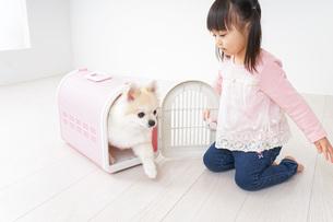 ペットの世話をする子どもの写真素材 [FYI04704807]
