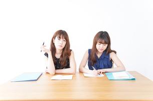 勉強する2人の女性の写真素材 [FYI04705854]
