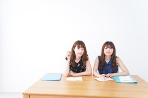 勉強する2人の女性の写真素材 [FYI04705871]