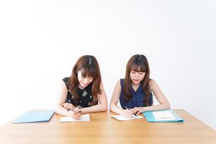 勉強する2人の女性の写真素材 [FYI04705878]