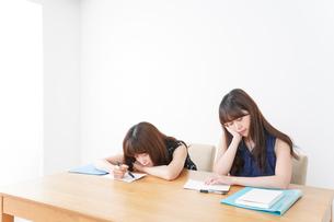 授業に退屈している学生の写真素材 [FYI04705923]
