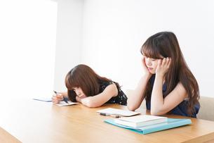 授業に退屈している学生の写真素材 [FYI04705927]