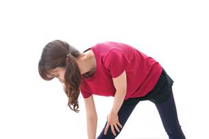 準備運動をする女性の写真素材 [FYI04706505]