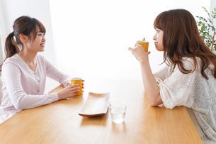 女子会をする若い2人の写真素材 [FYI04707189]