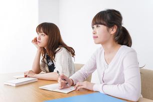 勉強する学生の写真素材 [FYI04707219]
