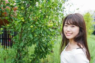 果物狩り・収穫の写真素材 [FYI04707341]