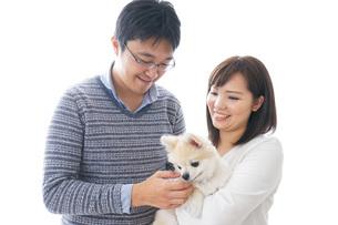 犬を飼う夫婦・カップルの写真素材 [FYI04707730]