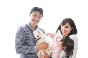 犬を飼う家族の写真素材 [FYI04707741]