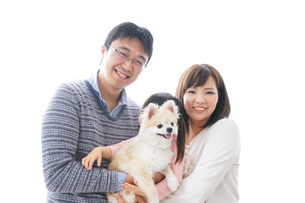 犬を飼う家族の写真素材 [FYI04707742]