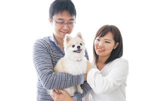 犬を飼う夫婦・カップルの写真素材 [FYI04707749]
