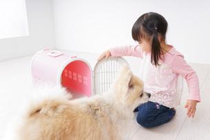 犬のお世話をする子どもの写真素材 [FYI04707785]