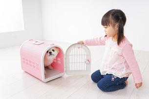 犬のお世話をする子どもの写真素材 [FYI04707786]