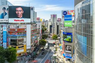 渋谷のスクランブル交差点の写真素材 [FYI04709343]