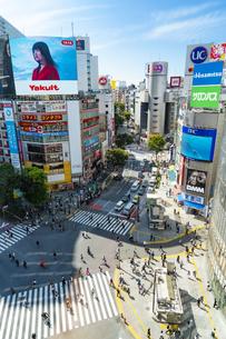 渋谷のスクランブル交差点の写真素材 [FYI04709483]