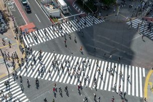 渋谷のスクランブル交差点の写真素材 [FYI04709610]