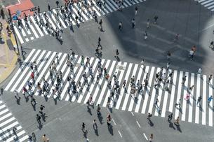 渋谷のスクランブル交差点の写真素材 [FYI04709624]