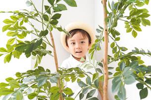 やんちゃな幼稚園児の写真素材 [FYI04711000]