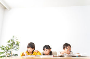 幼児教育の写真素材 [FYI04711161]