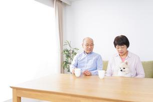 老夫婦の写真素材 [FYI04711333]