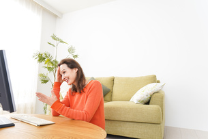 自宅でパソコンを使う若い女性の写真素材 [FYI04712238]
