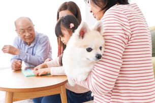 幸せな家族の集合写真の写真素材 [FYI04712913]