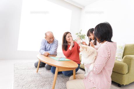 幸せな家族の集合写真の写真素材 [FYI04712915]