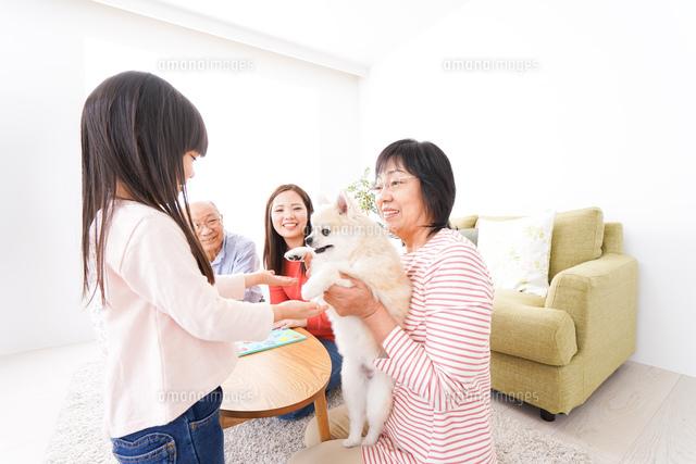 幸せな家族の集合写真の写真素材 [FYI04712916]