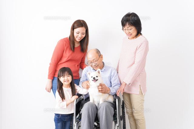 幸せな家族の集合写真の写真素材 [FYI04712973]
