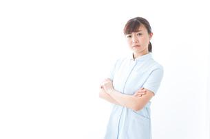 自信がある若い看護師の写真素材 [FYI04713189]