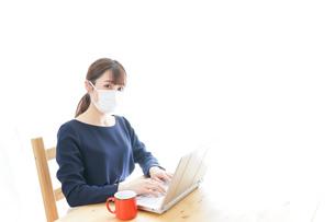 マスクをしてリモートワークをする若いビジネスウーマンの写真素材 [FYI04714074]