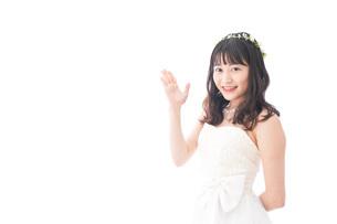 紹介をするドレス姿の花嫁の写真素材 [FYI04714718]