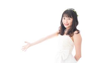 紹介をするドレス姿の花嫁の写真素材 [FYI04714720]