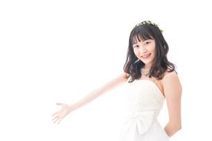 紹介をするドレス姿の花嫁の写真素材 [FYI04714721]