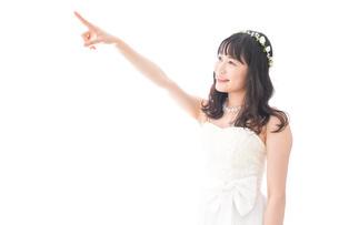 将来を指差すドレス姿の花嫁の写真素材 [FYI04714730]