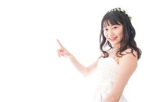 紹介をするドレス姿の花嫁の写真素材 [FYI04714760]